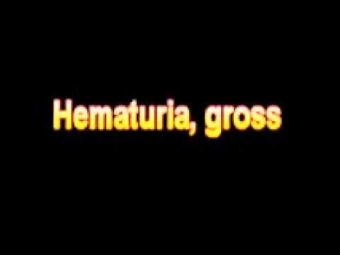 What Is The Definition Of Hematuria, gross – Medical Dictionary Free Online Terms
