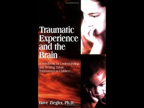 Free Traumatic Experience and the Brain