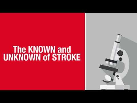 What Causes Stroke Animated Video HD