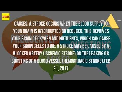 What Is A Brain Stroke?