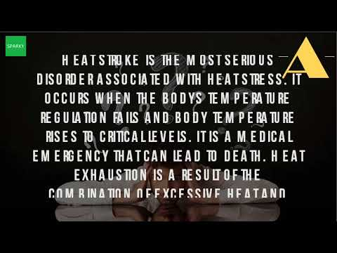 What Is The Definition Of Heat Stress?
