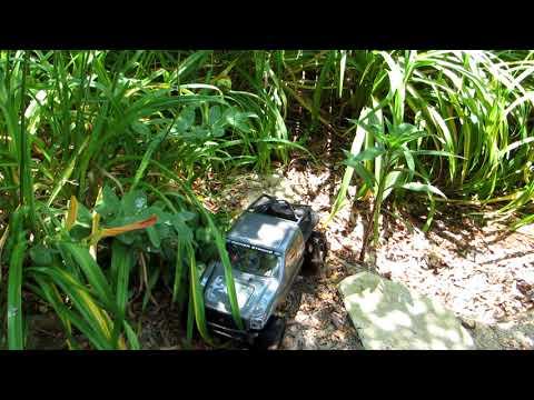 JOO170612 Power Stroke In The Garden