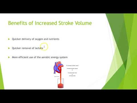 Adaptations to Exercise: Stroke Volume